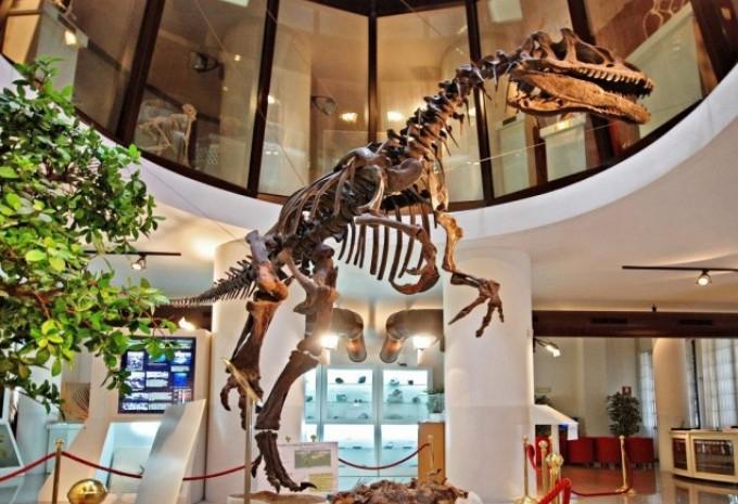 Foto di scheletro di dinosauro